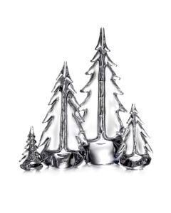 Young Evergreen Grove (Gift Boxed)