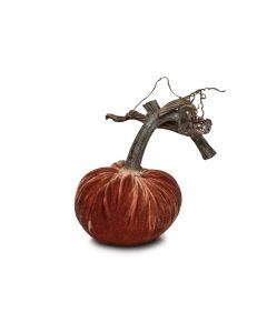 Spice Velvet Pumpkin