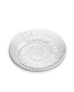 Shell Platter | 2nd