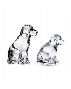 Puppy & Dog (Gift Boxed)