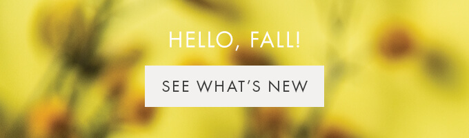 HELLO FALL  — SEE WHAT'S NEW >