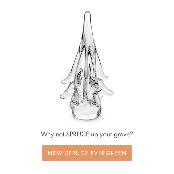 Why not SPRUCE up your grove? — NEW SPRUCE EVERGREENS >