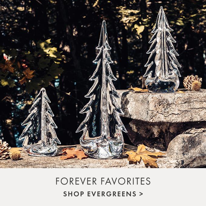 FOREVER FAVORITES — SHOP EVERGREENS >