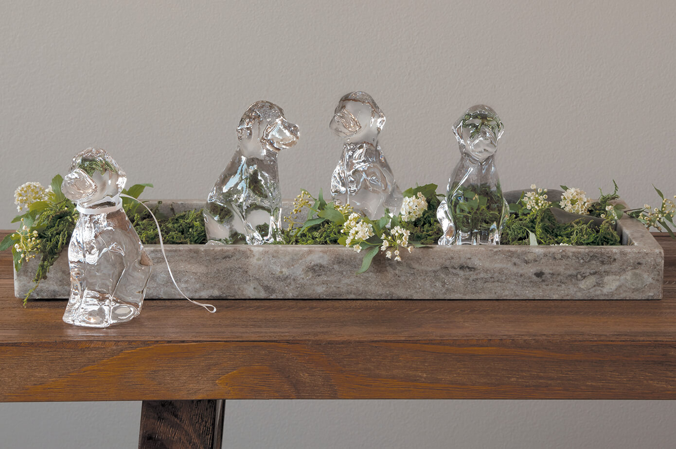 Glass Dogs With Books + Plants
