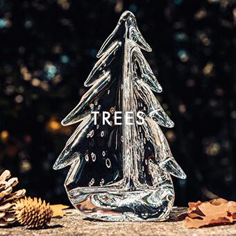 EVERGREEN TREES  — SHOP TREES >