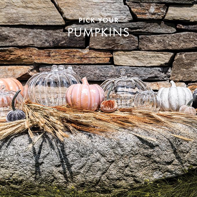 Pumpkins With a Twist
