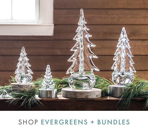 Shop Evergreen + Bundles