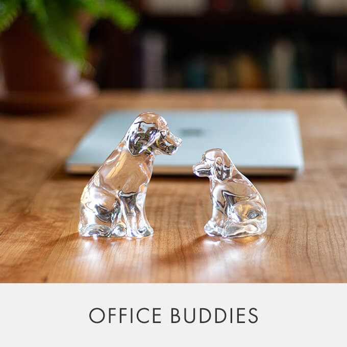 The Glass Dog — While we miss our coworkers, our -furry- home office companions are picking up the slack with loyalty, love and friendship.  > THE GLASS DOG