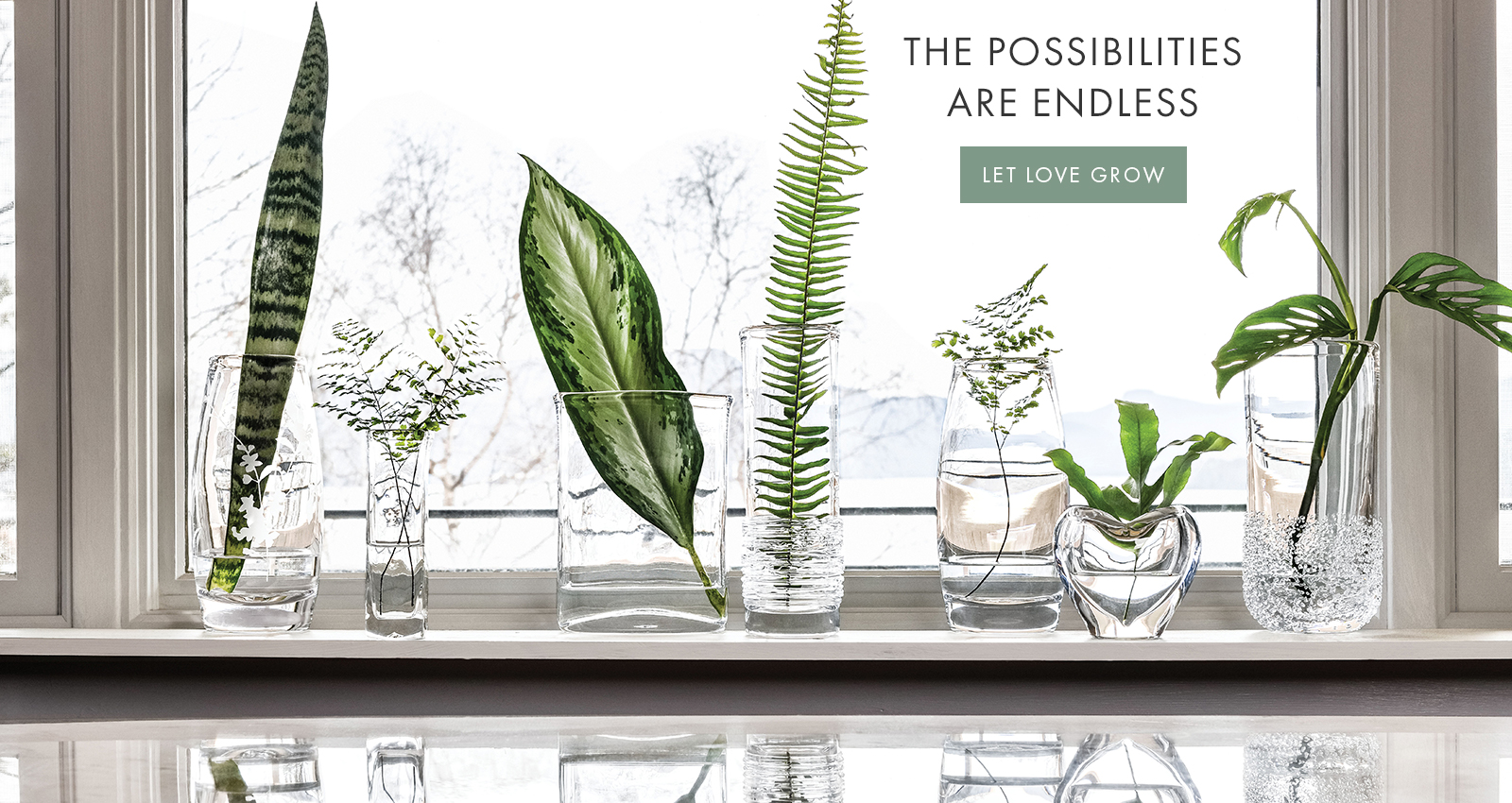 THE POSSIBILITIES ARE ENDLESS  —  LET LOVE GROW >