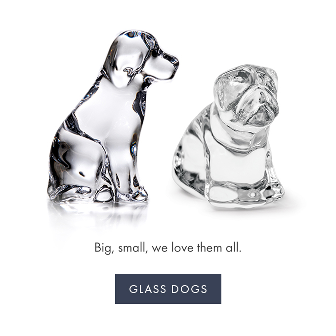 Big, small, we love them all. —GLASS DOGS >