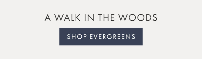 A WALK IN THE WOODS — SHOP EVERGREENS