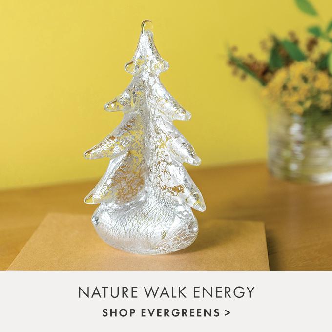 NATURE WALK ENERGY — VERMONT EVERGREENS >