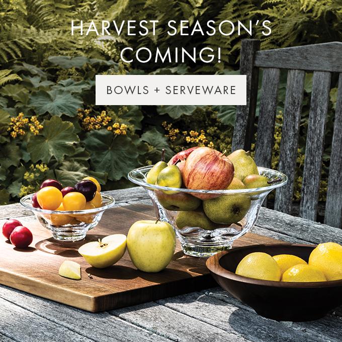 HARVEST SEASON'S COMING! — BOWLS + SERVEWARE >