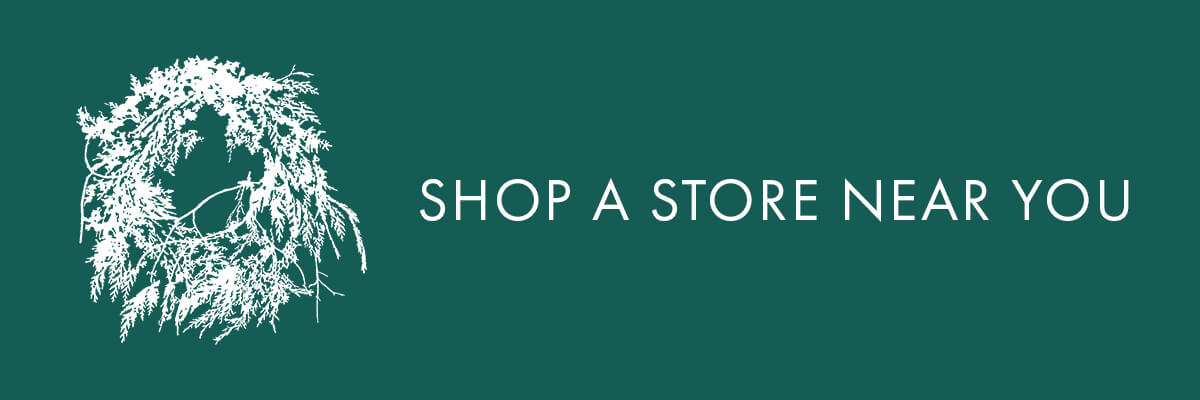Shop A Store Near You banner